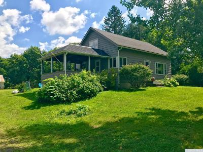 Columbia County Single Family Home Accepted Offer: 918 Route 203