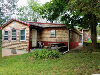 Copake Single Family Home For Sale: 19 Ivy Street