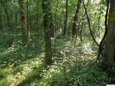 Hillsdale Residential Lots & Land For Sale: 322 Mitchell Street