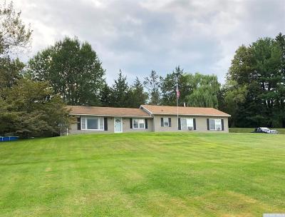 Greene County Single Family Home For Sale: 19 Hadley Drive