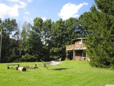 Greene County Single Family Home For Sale: 476 Mitchell Hollow Road