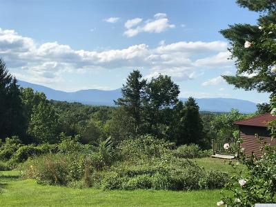 Dutchess County Single Family Home For Sale: 4813 Route 9g