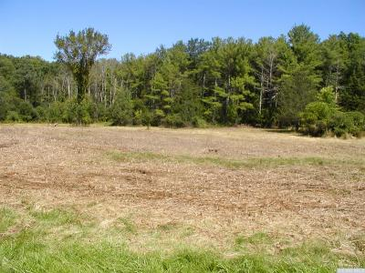 Lots & Land for Sale in Greene County, NY