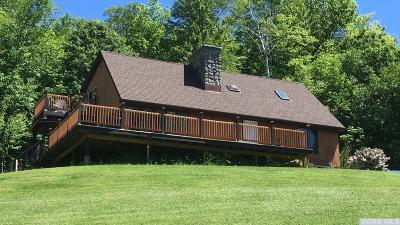 Rensselaer County Single Family Home For Sale: 91 Robinson Hollow Way