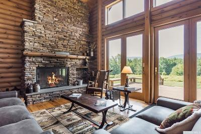 Greene County Single Family Home For Sale: 77 Grinnell Road