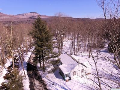 Greene County Single Family Home For Sale: 25 Wase Road
