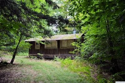 Greene County Single Family Home For Sale: 60 Woodland Trail