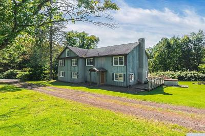 Greene County Single Family Home For Sale: 294 Route 77