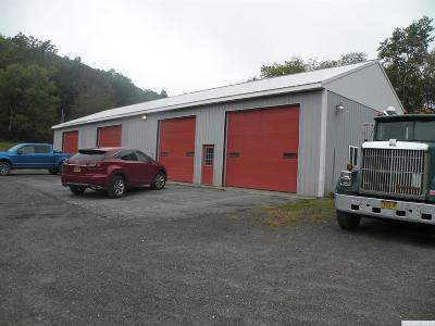 Columbia County Commercial For Sale: 7124 State Route 22