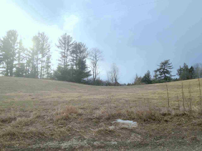 Residential Lots & Land For Sale: Cartier Ln