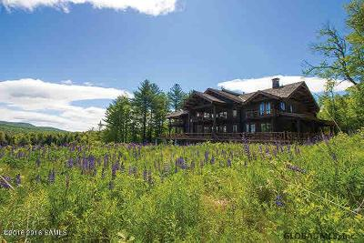 Schroon Single Family Home For Sale: 490 Loch Muller Rd