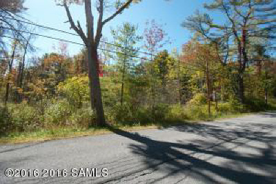 Lake George Residential Lots & Land For Sale: Flat Rock Rd