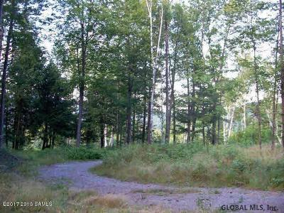 Essex County Residential Lots & Land For Sale: Olmstedville Rd