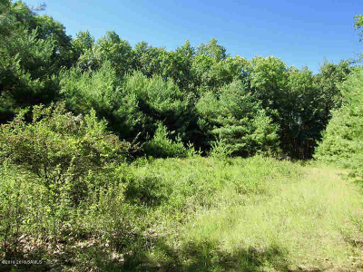 Residential Lots & Land For Sale: Lockhart Mountain Rd