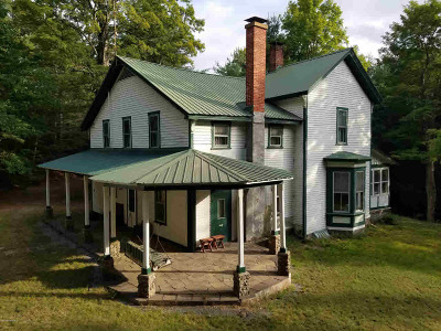 Horicon Single Family Home For Sale: 27 Red Wing Rd