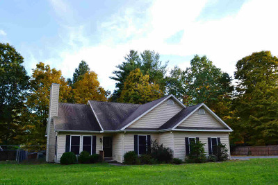 Queensbury, Fort Ann Single Family Home For Sale: 1040 W Mountain Road