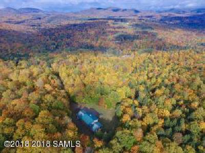 Saratoga County, Warren County Single Family Home For Sale: 507 Barton Mines-Road Road