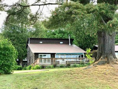 Albany County, Saratoga County, Schenectady County, Warren County, Washington County Single Family Home For Sale: 10 Vista View Drive