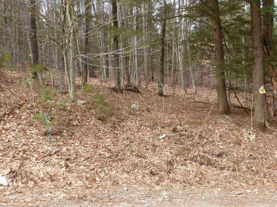 Warren County Residential Lots & Land For Sale: Spring Woods Rd