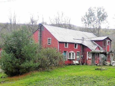 Warrensburg Single Family Home For Sale: 195 Valley Road