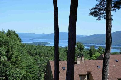 Lake George Single Family Home For Sale: 441 Lockhart Mountain Rd #3