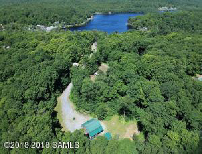 Albany County, Saratoga County, Schenectady County, Warren County, Washington County Single Family Home For Sale: 48 Hoffman-Road Road