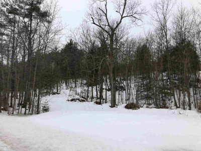 Lake George Residential Lots & Land For Sale: 1881 U.s. 9