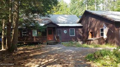 Horicon Single Family Home For Sale: 119 Delaney Dr