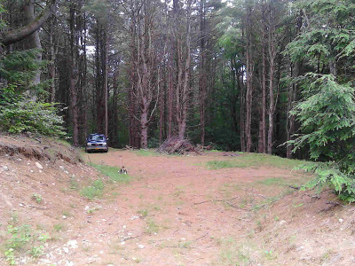 Residential Lots & Land For Sale: 1771 Glens Falls Mountain Rd