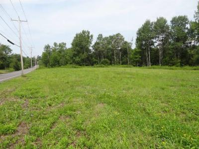 Gloversville Residential Lots & Land For Sale: 100 W Eleventh St