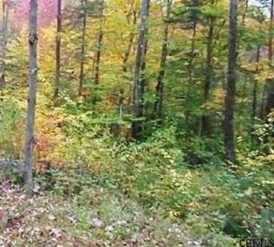 Northville Residential Lots & Land For Sale: County Rt 6