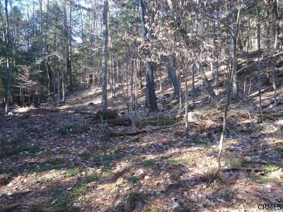 Lake Luzerne NY Residential Lots & Land For Sale: $27,000