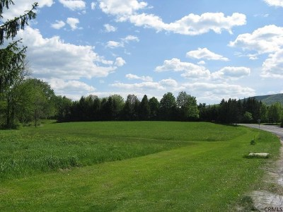 New Scotland NY Residential Lots & Land Closed (Final Sale): $57,500