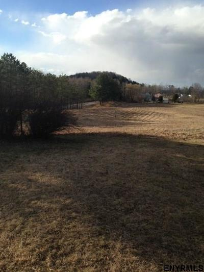 Saratoga Springs Residential Lots & Land For Sale: 372 Rt 423