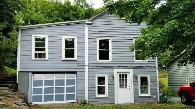 Chatham Single Family Home For Sale: 3636 State Route 66