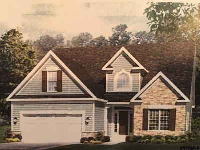 Saratoga County Single Family Home For Sale: 106 Blueberry La