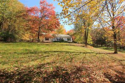 Copake Single Family Home For Sale: 1236 County Rt 27a