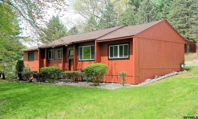 Guilderland Single Family Home For Sale: 29 West Dillenbeck Dr