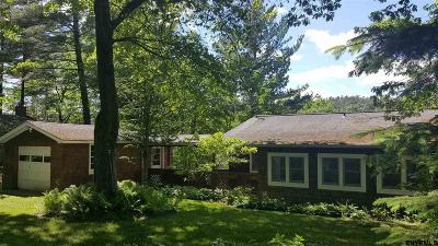 Copake Single Family Home For Sale: 1228 Lakeview Rd