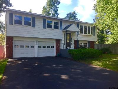 Schenectady Single Family Home For Sale: 202 Vly Rd