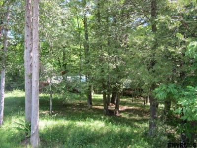 Horicon NY Residential Lots & Land For Sale: $55,000