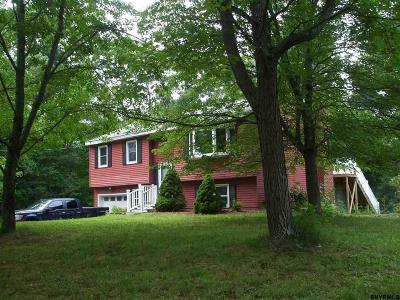 East Greenbush Single Family Home For Sale: 177 Werking Rd