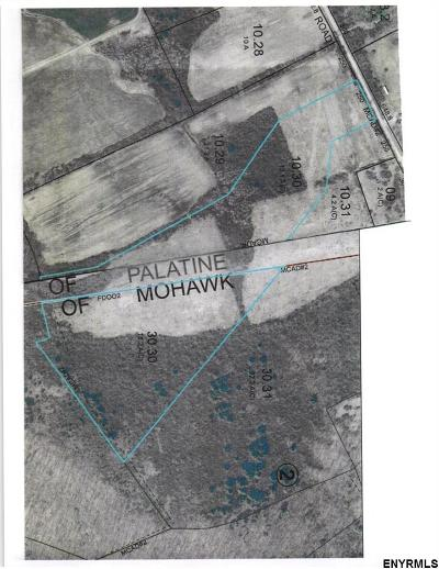Palatine NY Residential Lots & Land For Sale: $89,000