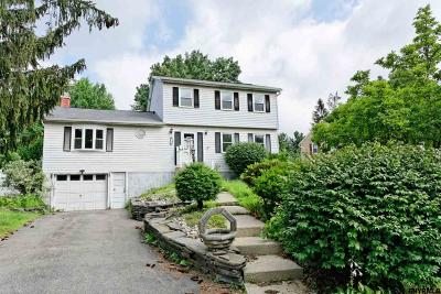 Albany Single Family Home For Sale: 18 Debbie Ct