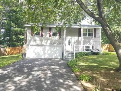 Saratoga Springs Single Family Home For Sale: 4 White Birch Path