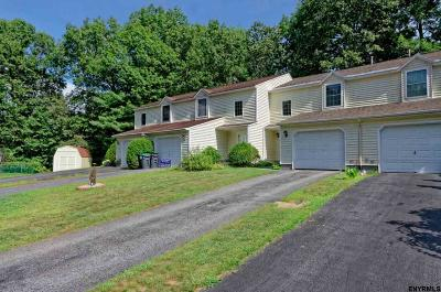 Ballston Spa Single Family Home For Sale: 307 Caribou Ct