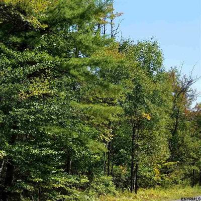 Saratoga County Residential Lots & Land Back On Market: County Route 10