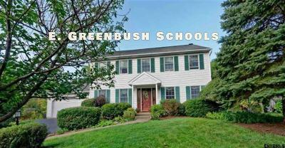 East Greenbush Single Family Home For Sale: 20 Hydor Dr