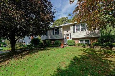 East Greenbush Single Family Home New: 44 Point View Dr