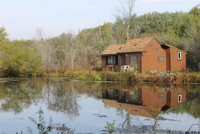 Esperance Single Family Home For Sale: State Route 30a
